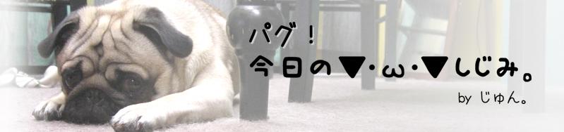 shijimi-top-2.jpg